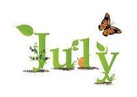 7 july - copy
