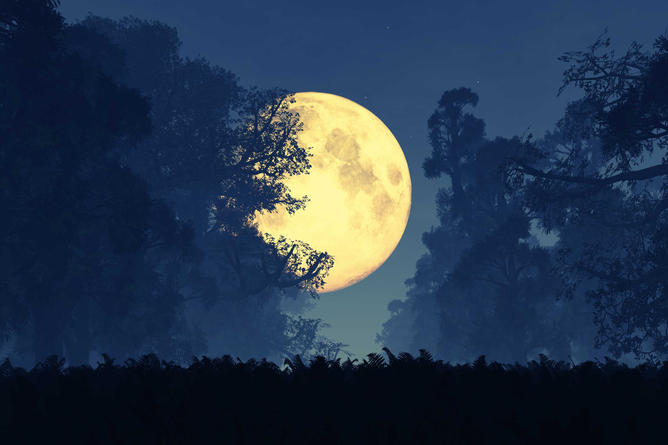 Image result for Super Moon in Taurus November 14, 2016