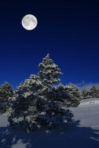 full moon in cancer december 29 2020